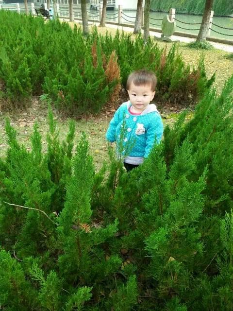 有木有宝妈知道宝宝流黄鼻涕吃什么药管用