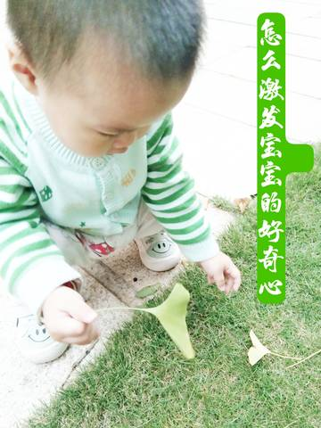 journal_insert_pic_1646323650